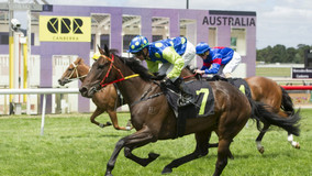Zariz filly could Rock On to Canberra Guineas