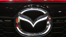 Gasoline-loving spiders cause Mazda car recall for second time