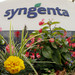 Syngenta may seek partners, JVs after product review: chairman in paper