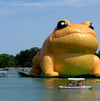 China censors squash giant inflatable toad reports