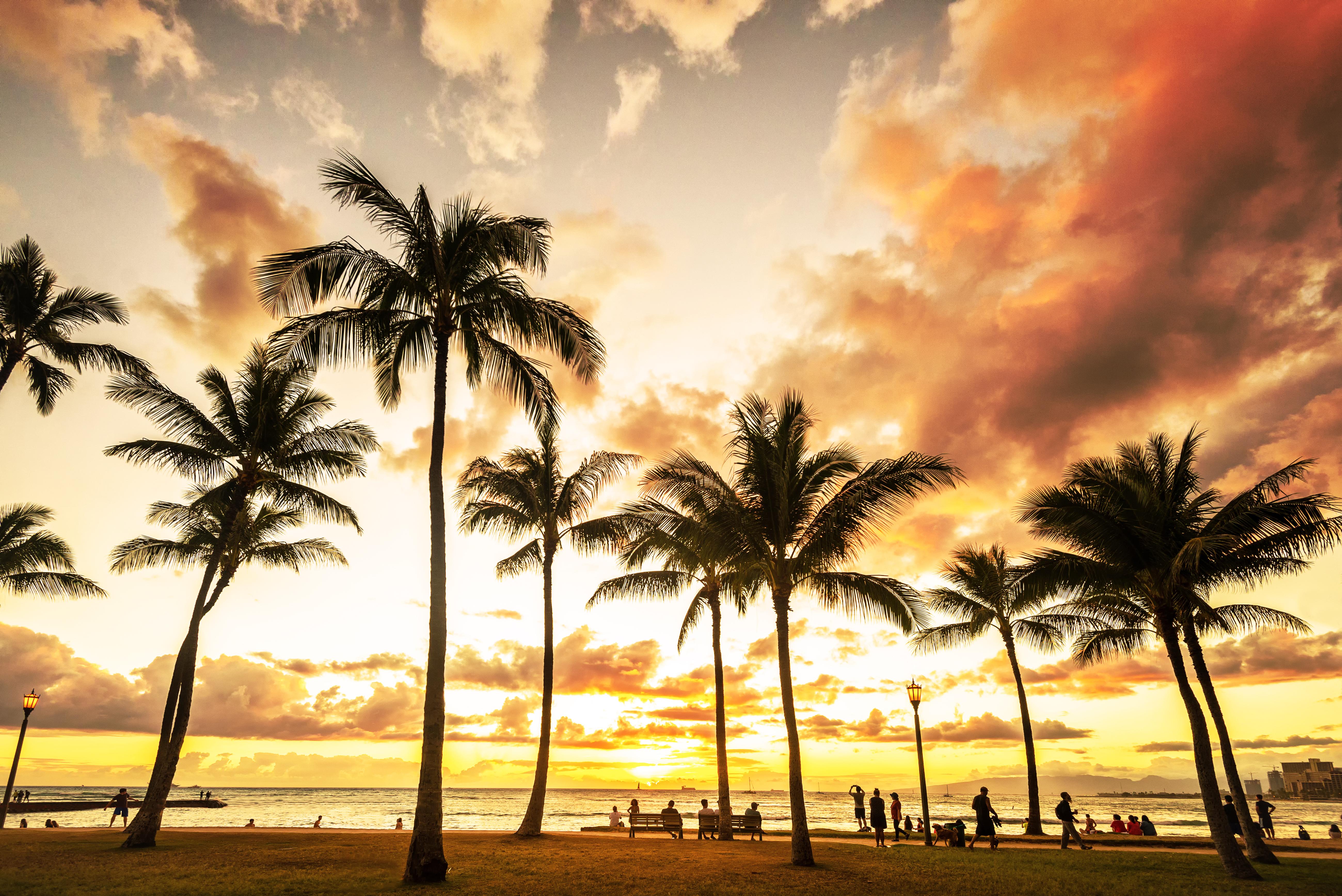 Golden hour sunset along Waikiki Beach