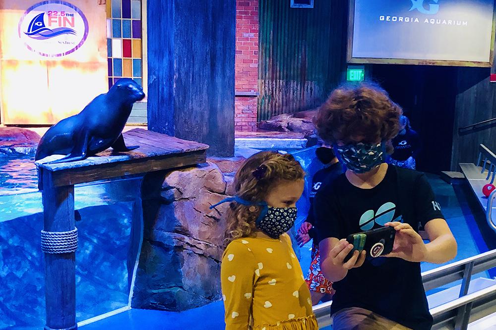 Visit the Georgia Aquarium on Your Atlanta Staycation