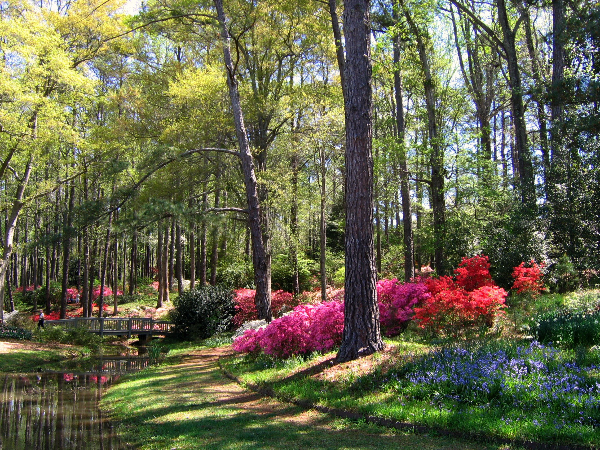 00-20161109_early-april-in-georgia-s-callaway-gardens.jpg