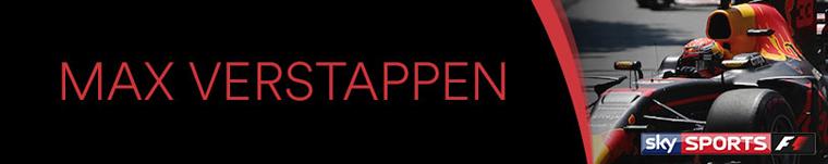 Max-Verstappen-logo_V2.jpg