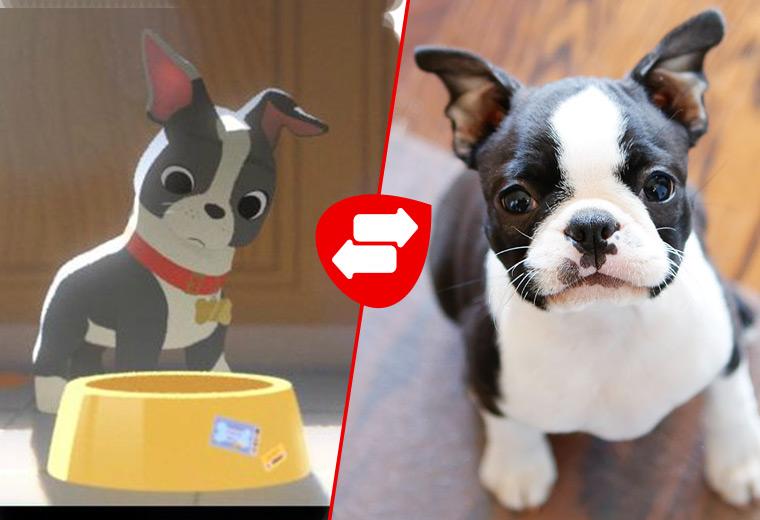 cartoon-dogs-11.jpg