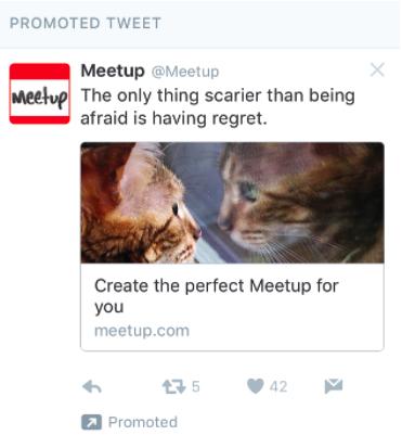 Twitter promoted tweet social media