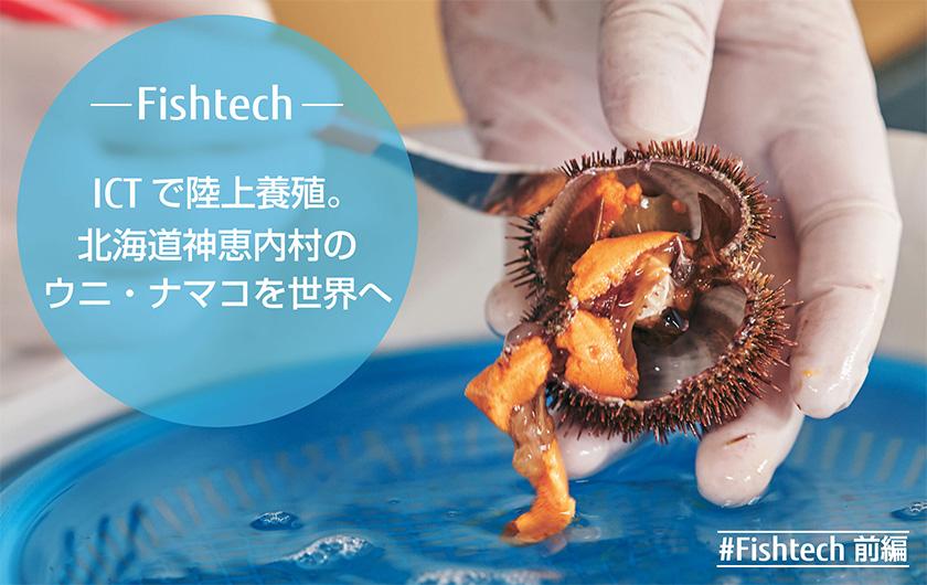 メインビジュアル : 北海道神恵内村のウニ・ナマコを世界へ ~ICTで進化する陸上養殖~(前編)「持続可能な水産業のために」