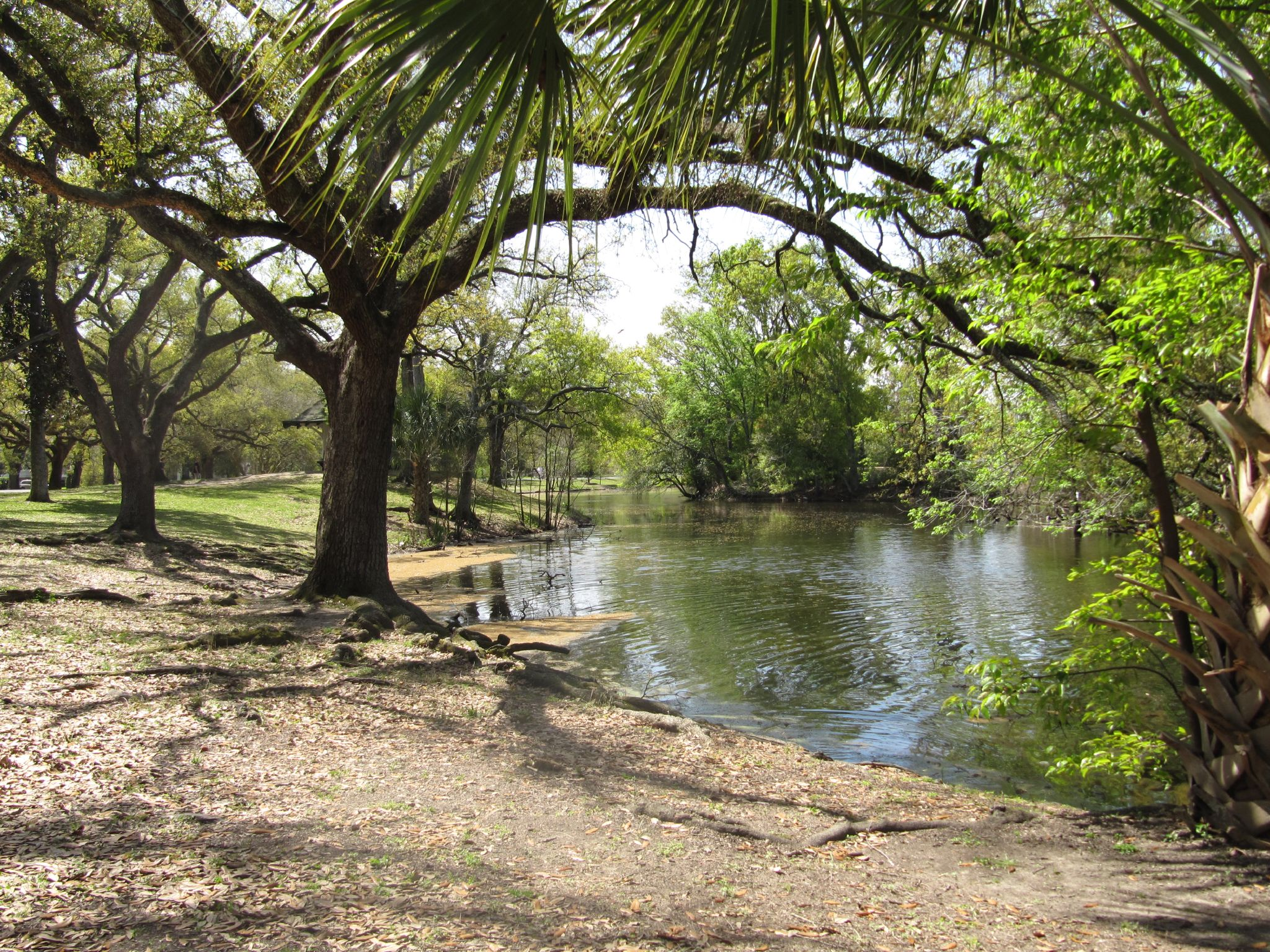 Audubon_Park_New_Orleans_Lake.jpg