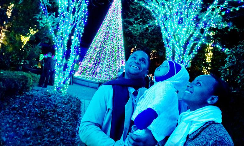 Garden Lights Holiday Nights delights at Atlanta Botanical Garden.