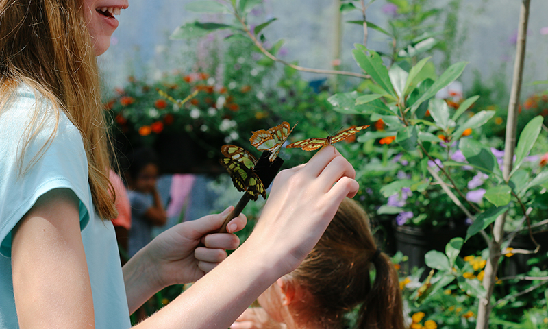 Kids love getting up close and personal with butterflies at Chattahoochee Nature Center. (Benjamin A. Pete Photography)