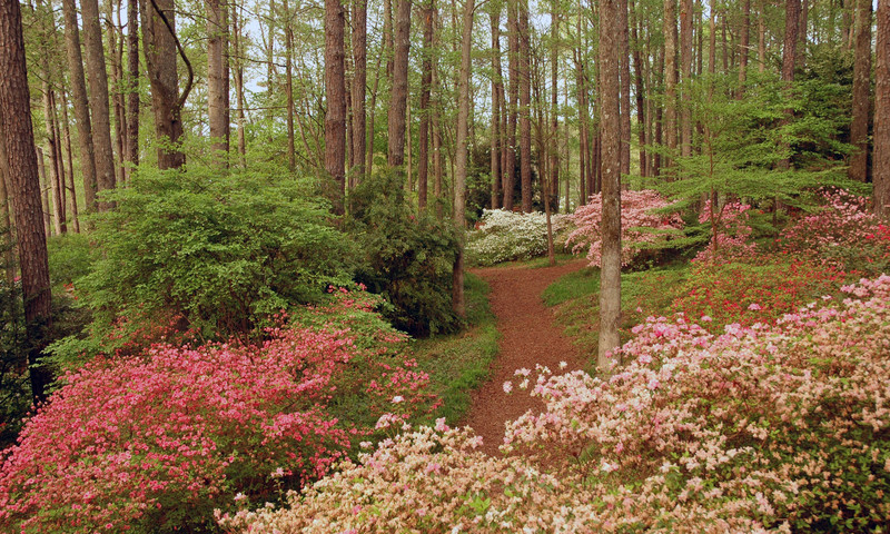 Explore the trail at Callaway Gardens in Pine Mountain, Ga.