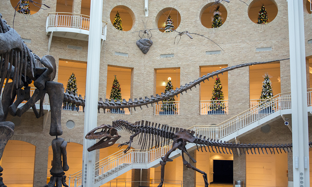 Winter Wonderland_Fernbank Museum of Natural History_Atlanta Things to do for the holidays with kids.jpg