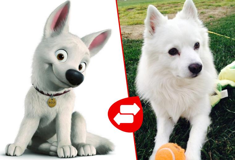 cartoon-dogs-05.jpg