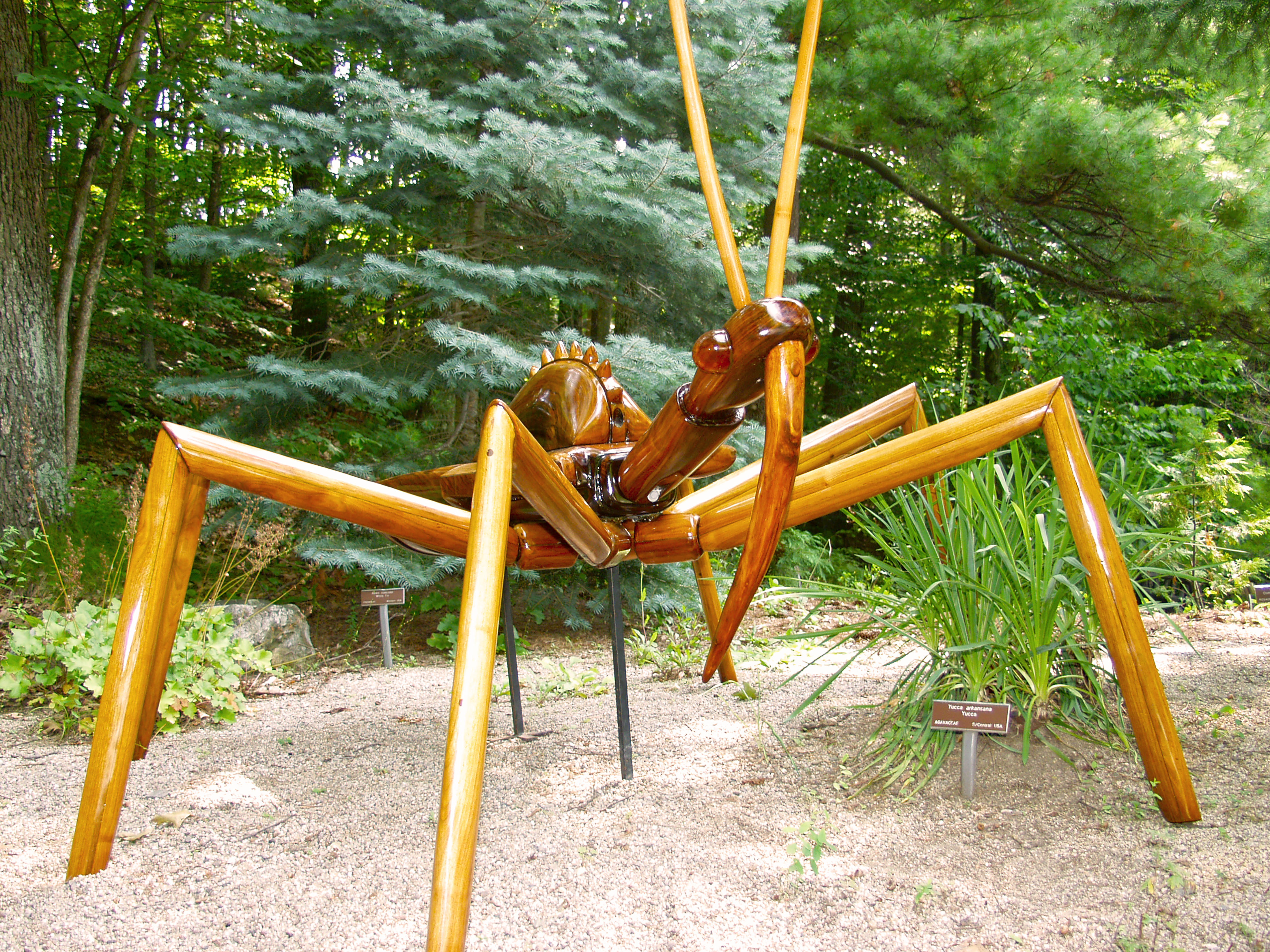 Summer Exhibit: Big Bugs at Fernbank Museum of Natural History in Atlanta
