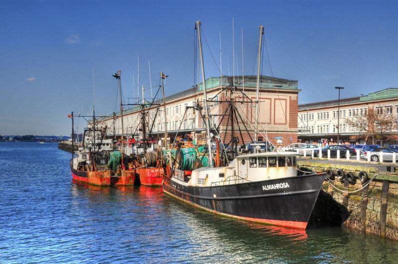 Boston Fish Pier.jpg