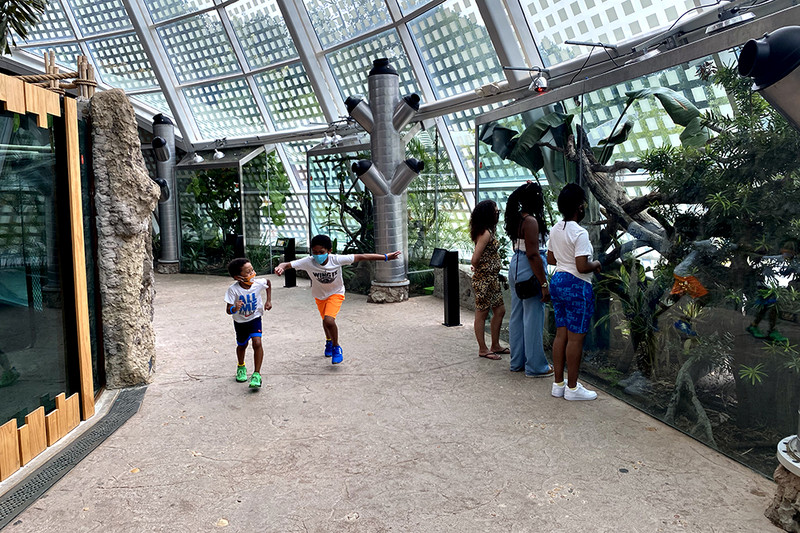 Visit all your favorite furry and slithering friends this summer at Zoo Atlanta.