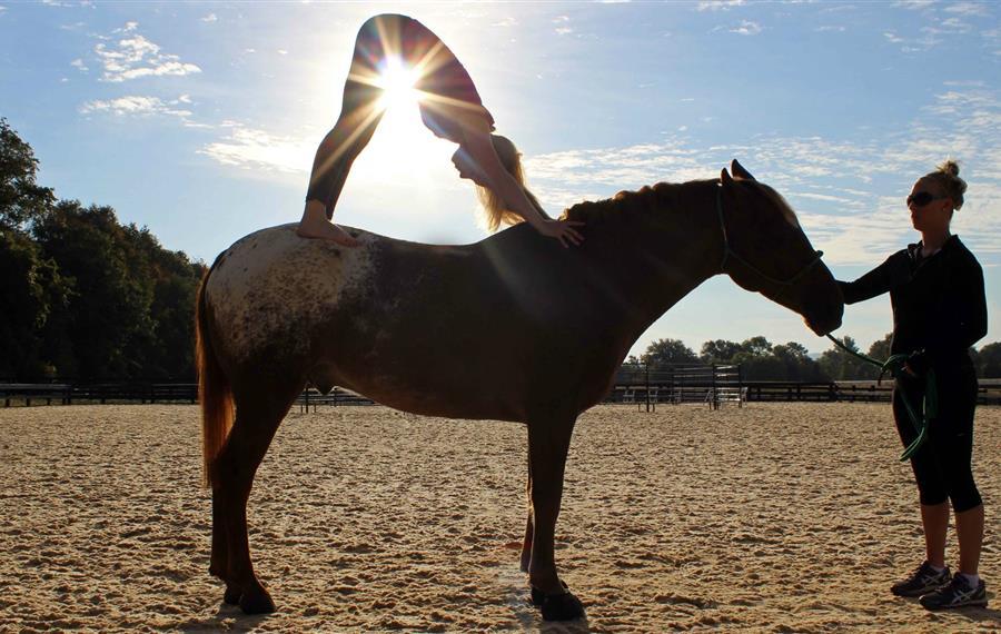 Salamander-Resort-horseback-yoga.jpg
